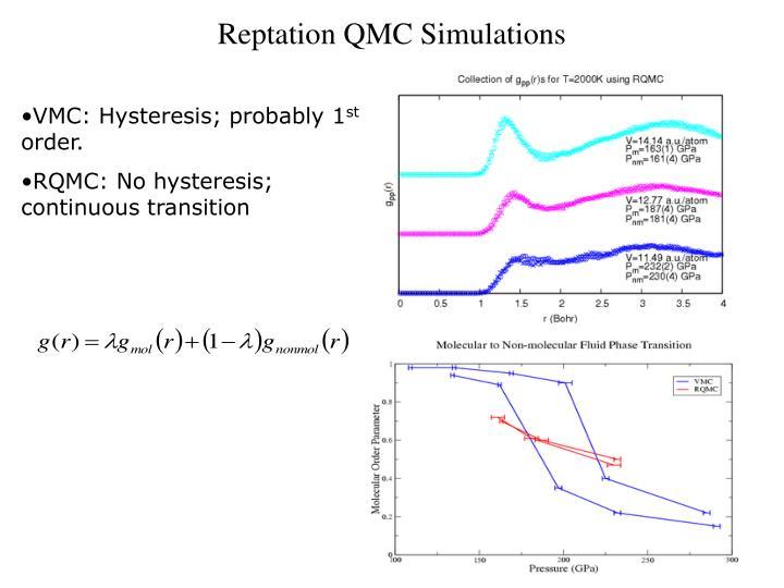 Reptation QMC Simulations
