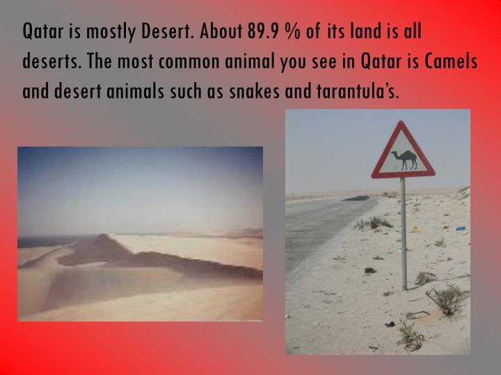 Qatar is mostly Desert. About 89.9 % of its land is all deserts. The most common animal you see in Q...