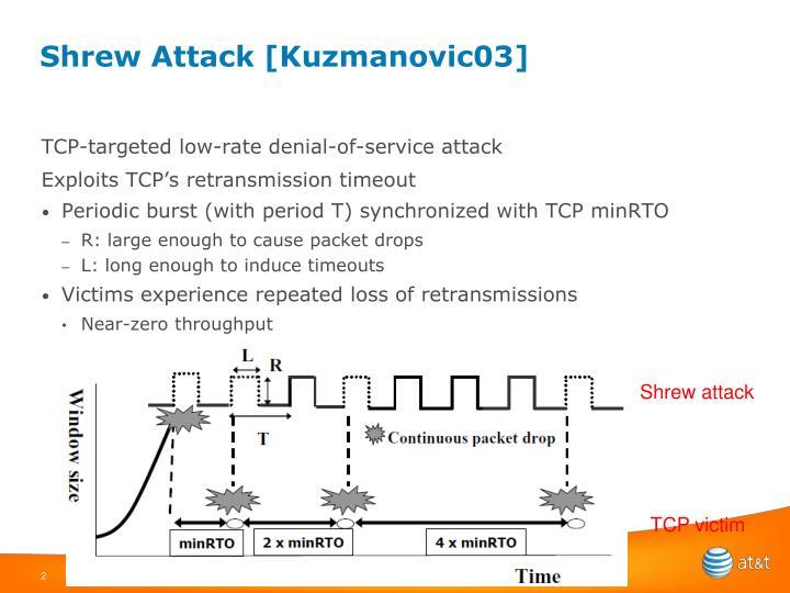 Shrew attack kuzmanovic03