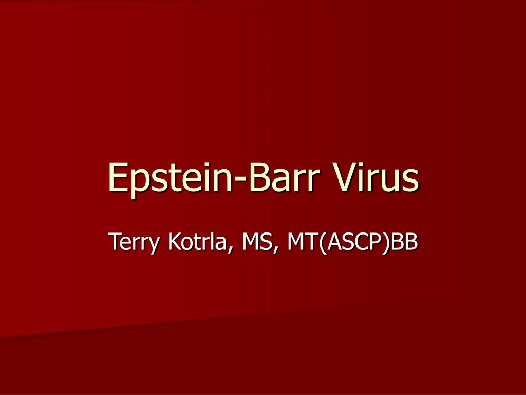 epstein barr virus l.