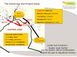 the cameroon gas project today