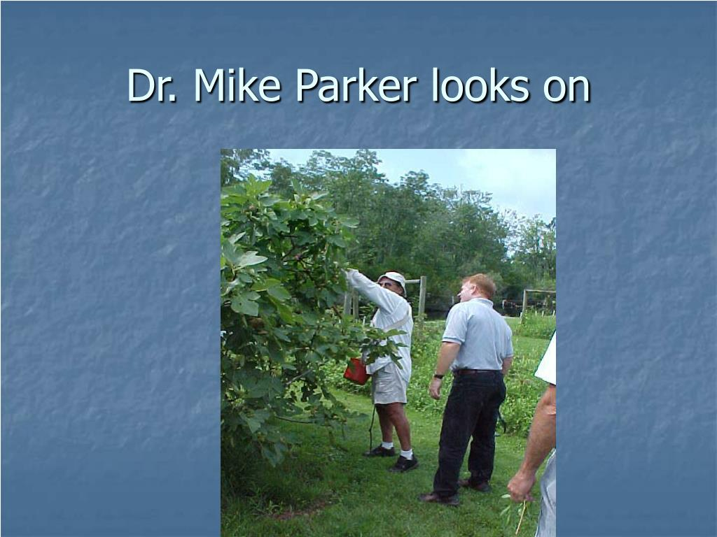 Dr. Mike Parker looks on
