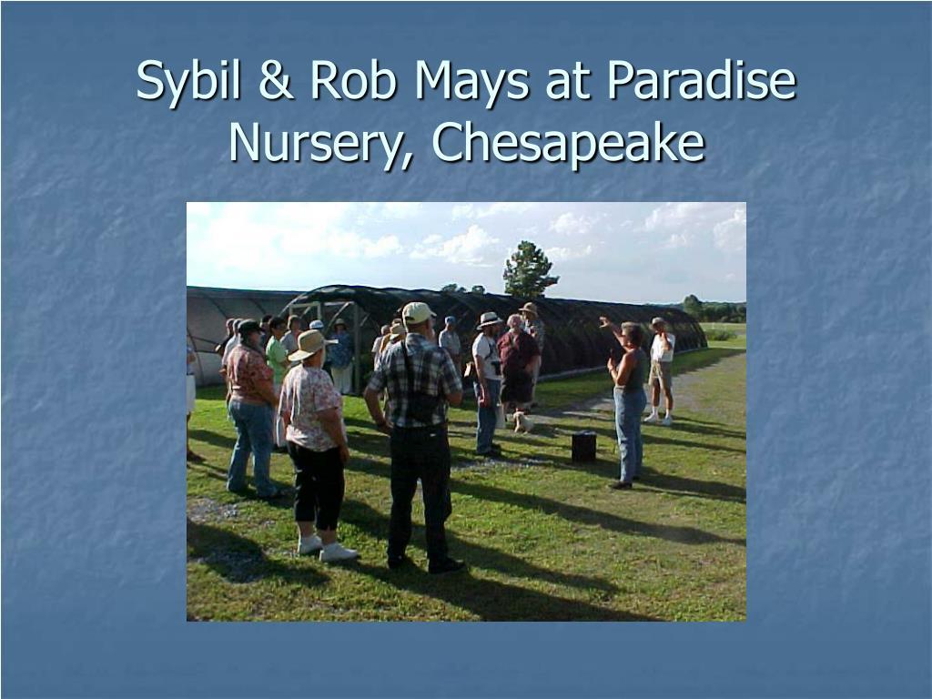 Sybil & Rob Mays at Paradise Nursery, Chesapeake
