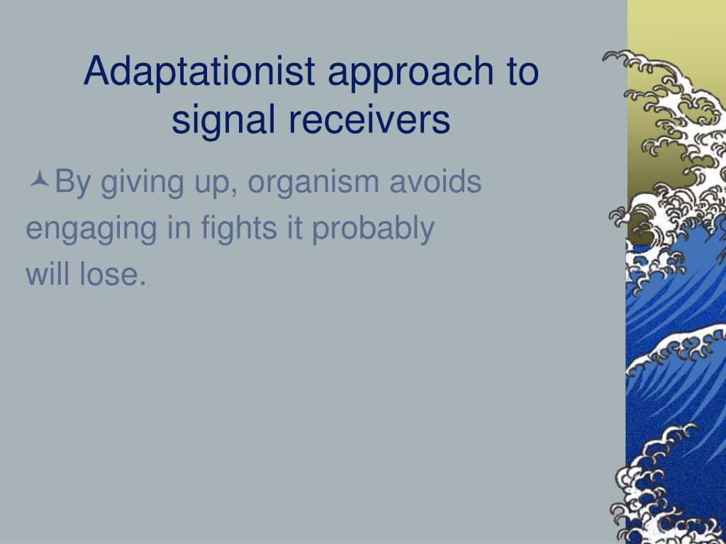 Adaptationist approach to signal receivers