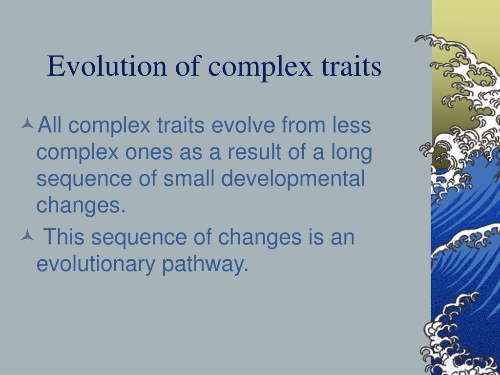 Evolution of complex traits
