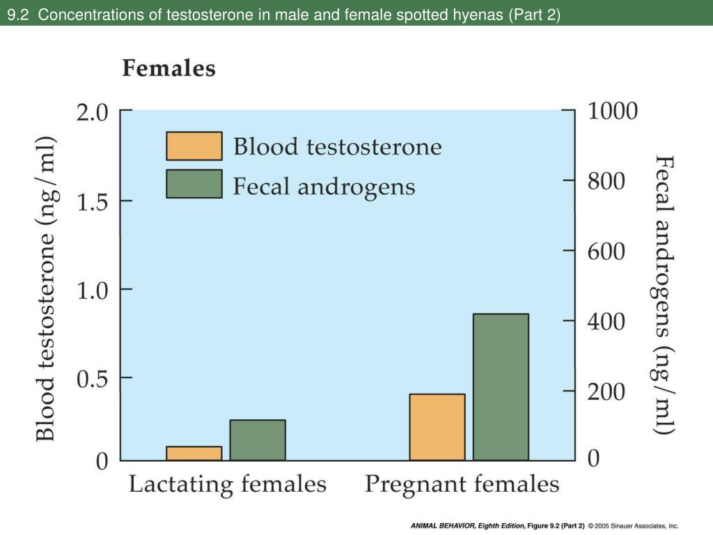 9.2  Concentrations of testosterone in male and female spotted hyenas (Part 2)