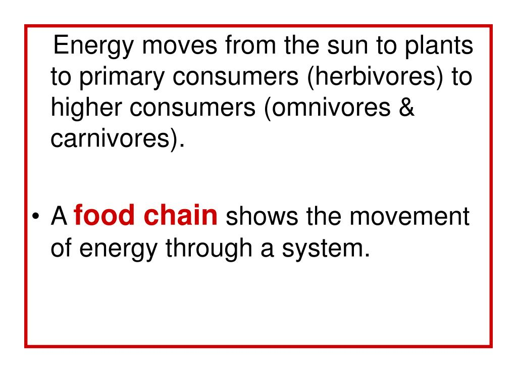 Energy moves from the sun to plants to primary consumers (herbivores) to  higher consumers (omnivores & carnivores).