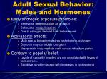 adult sexual behavior males and hormones