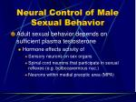neural control of male sexual behavior