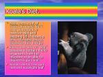 koala s diet