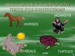 which animals climb up into trees for protection