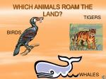 which animals roam the land