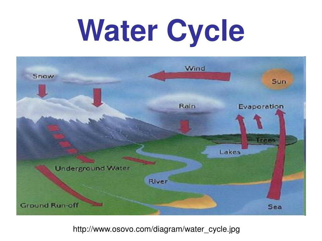 Ppt Water Cycle Vocabulary Powerpoint Presentation Free