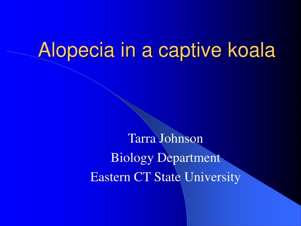 alopecia in a captive koala l.