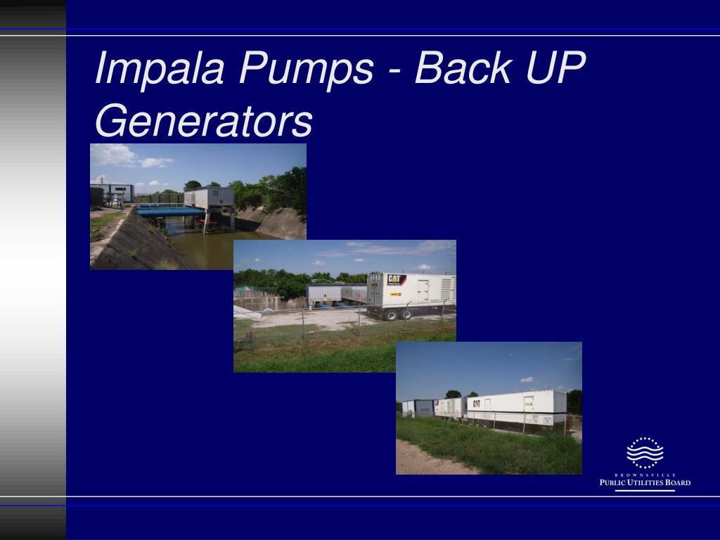 Impala Pumps - Back UP Generators