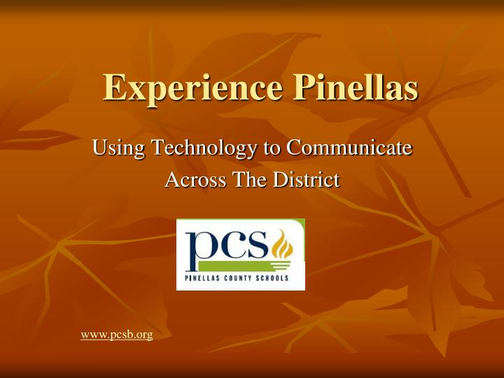 Experience pinellas