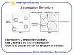 segregation behaviors