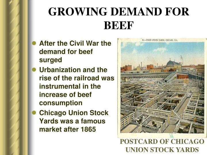 GROWING DEMAND FOR BEEF