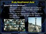 arab southwest asia7