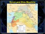 sunni and shia muslims
