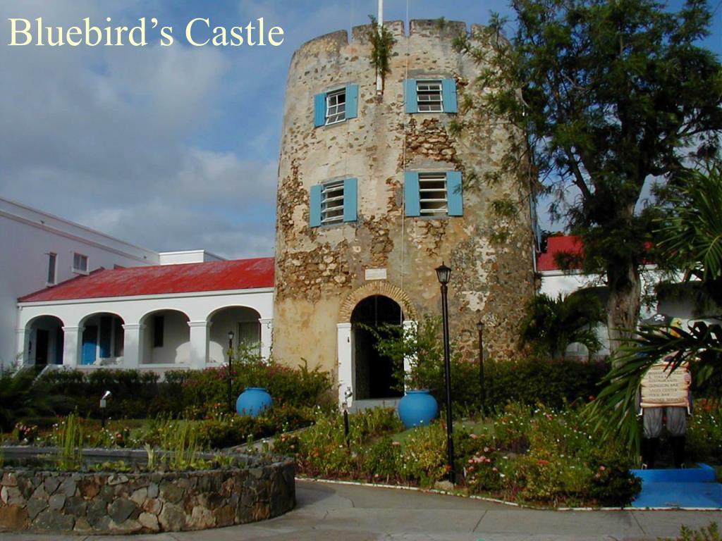Bluebird's Castle