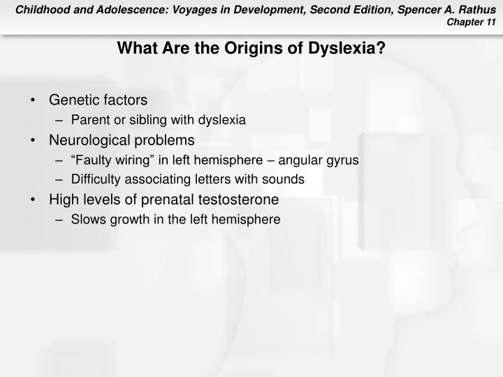 What Are the Origins of Dyslexia?