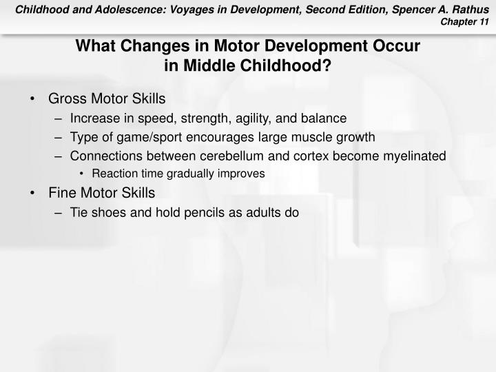 What Changes in Motor Development Occur