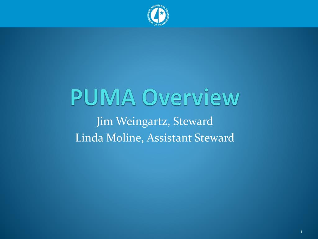 puma overview