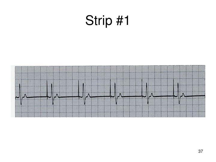 Strip #1