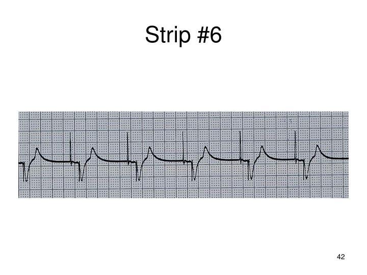 Strip #6