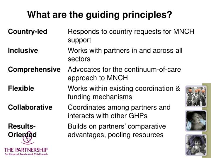 What are the guiding principles?
