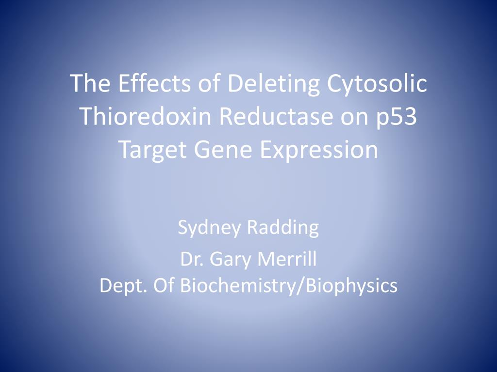 the effects of deleting cytosolic thioredoxin reductase on p53 target gene expression l.