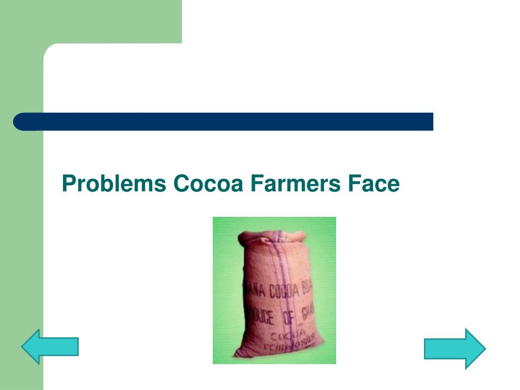 Problems Cocoa Farmers Face