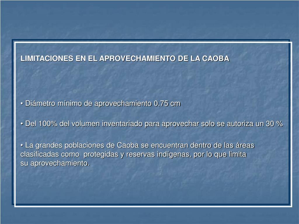 LIMITACIONES EN EL APROVECHAMIENTO DE LA CAOBA