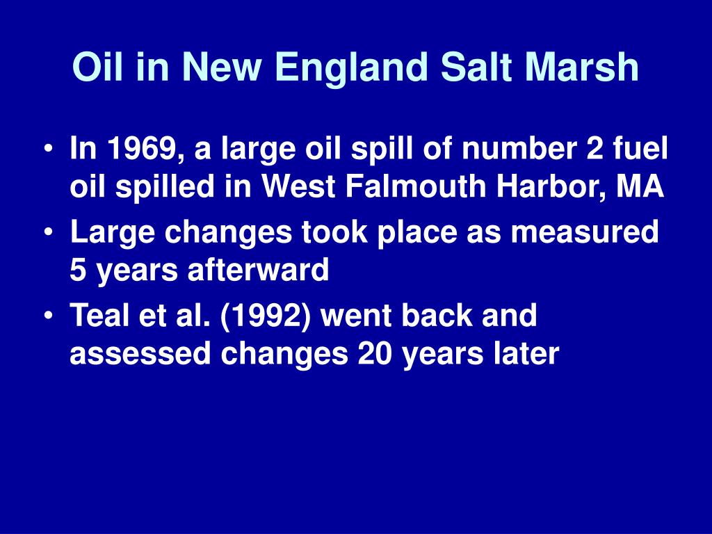Oil in New England Salt Marsh