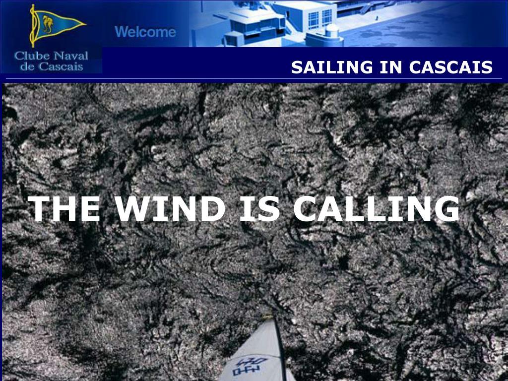 sailing in cascais l.