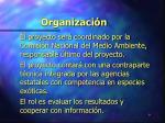 organizaci n9