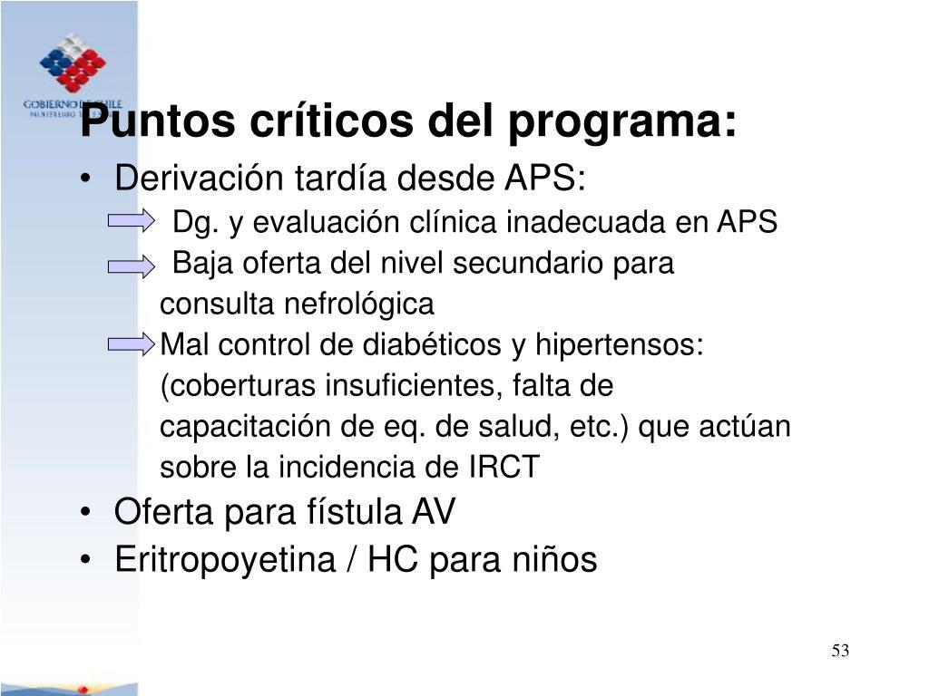 Puntos críticos del programa: