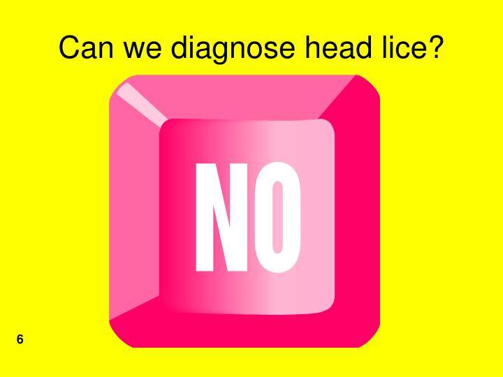 Can we diagnose head lice?