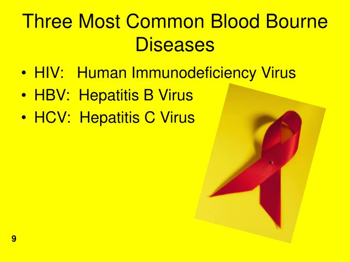 Three Most Common Blood Bourne Diseases