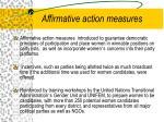 affirmative action measures