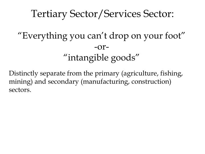 Tertiary sector services sector