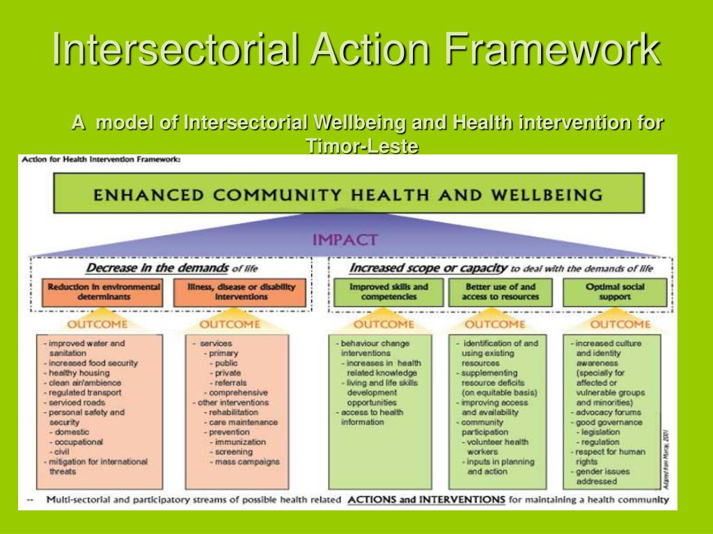 Intersectorial Action Framework