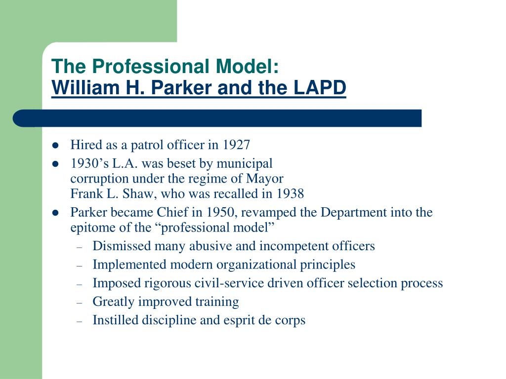 The Professional Model:
