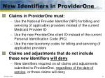 new identifiers in providerone