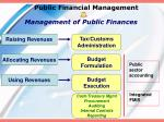 public financial management