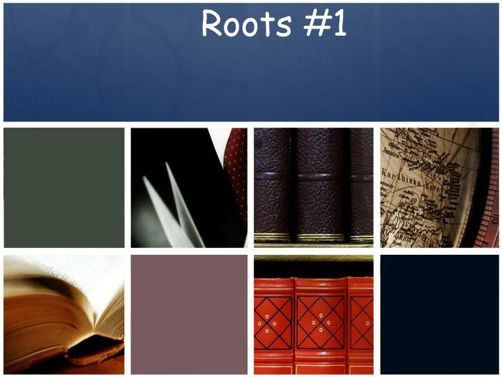 roots 1 n.