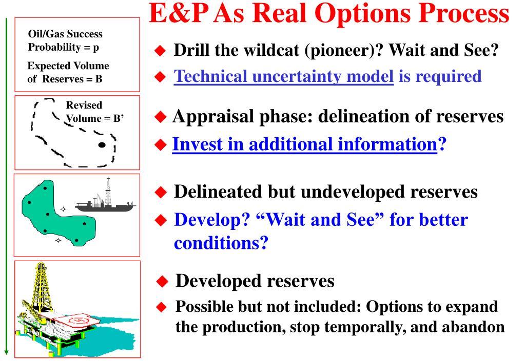 E&P As Real Options Process