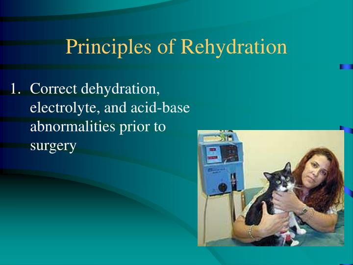 Principles of Rehydration