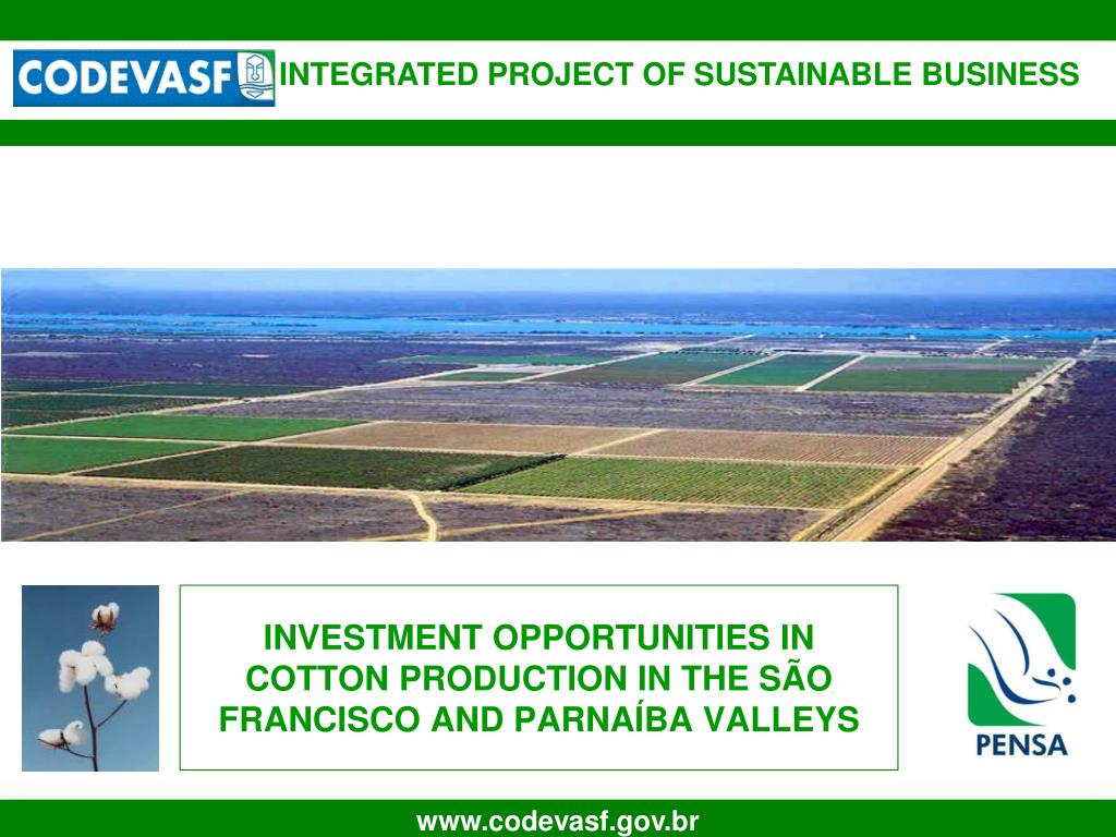investment opportunities in cotton production in the s o francisco and parna ba valleys l.